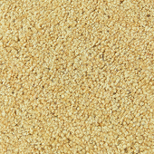 Gold Bullion Saxony Event Carpet - 3 Feet Wide - Select Your Length!