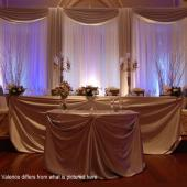 DELUXE 3 Panel Standard Backdrop - 8-20ft High