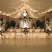 Starlight Lighting Kit  - 3 strands of Lights Recommended for 6 Panel Ceiling Draping Kit