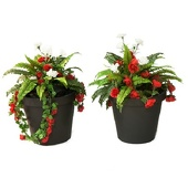 Planters Kit (set of 2)