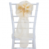 "DecoStar™ 9"" Sheer Flower Chair Accent - Champagne"